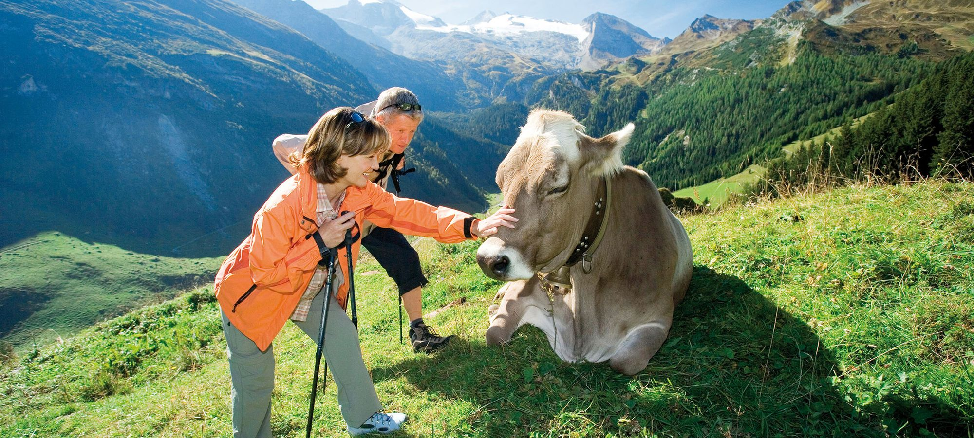 Im Zillertal warten leichte bis anspruchsvolle Wander- und Bergtouren darauf erkundet zu werden.